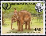 iyy1985-niger-4