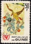 unicef-guinea-3