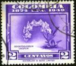 upu75-col1
