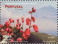 EU1999-azores1