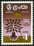 WRY-Ceylon1