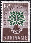 wry-surinam1