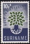 wry-surinam2