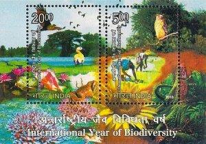 IBY2010-India