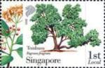 IBY2010-Singapore2