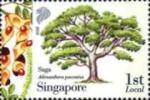 IBY2010-Singapore5